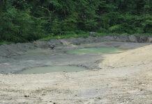 Auf dem Gelände der ehemaligen Kläranlage in Zumikon gibt es noch viel zu tun, bevor die Wasserfledermäuse heimisch werden. (Bild: bms)